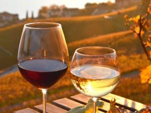 prodotti-il-buon-vino-banner